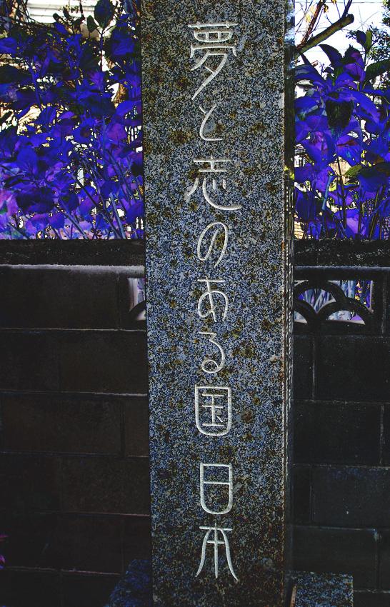 2015.12.41
